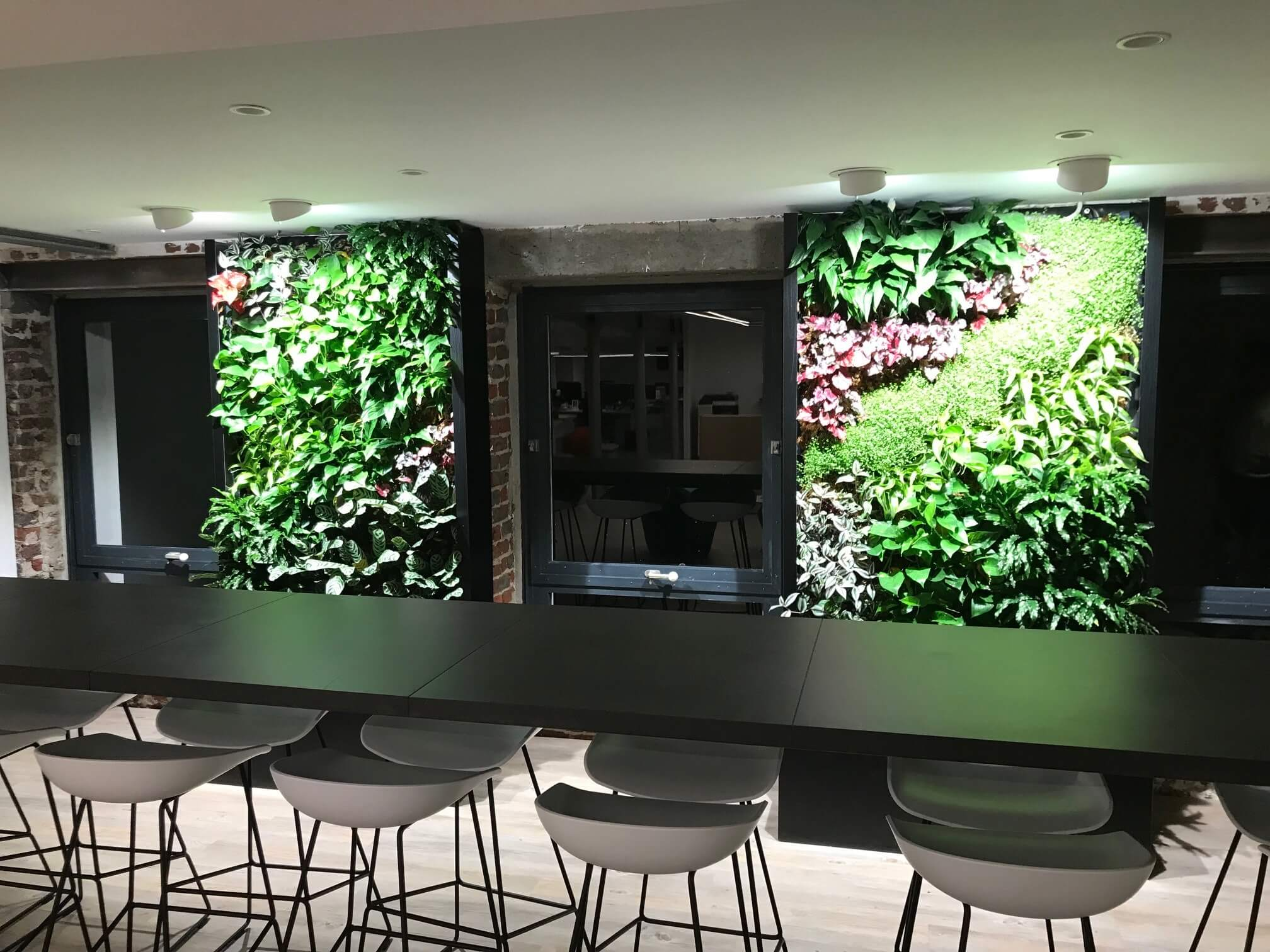 bureau-plants-galerie-electricite-vanhoyesprl