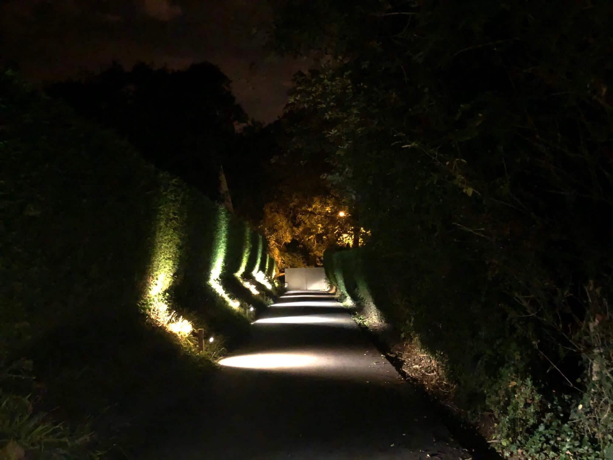 night-elec-jardin-galerie-electricite-vanhoyesprl