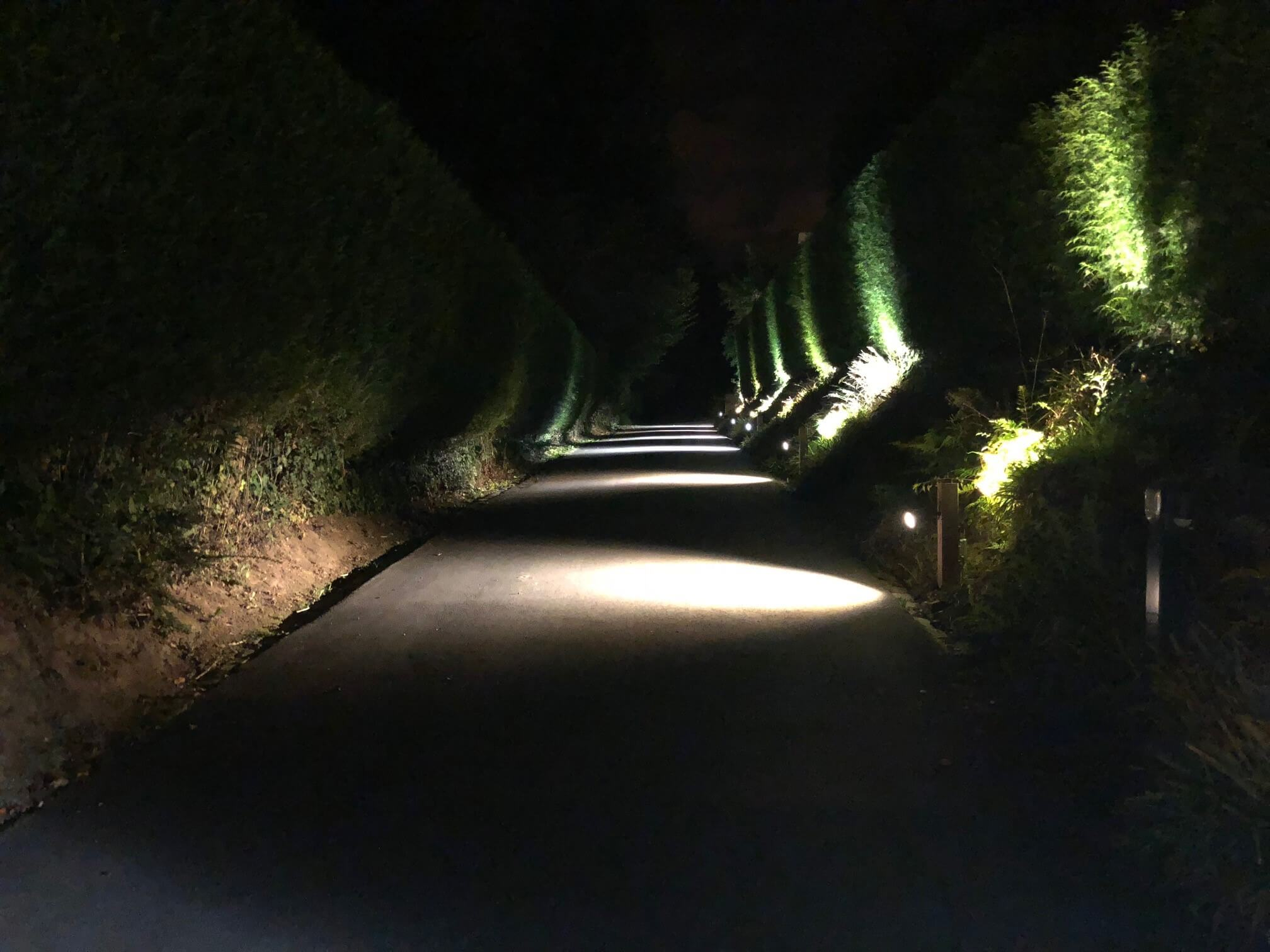night-electricite-galerie-electricite-vanhoyesprl
